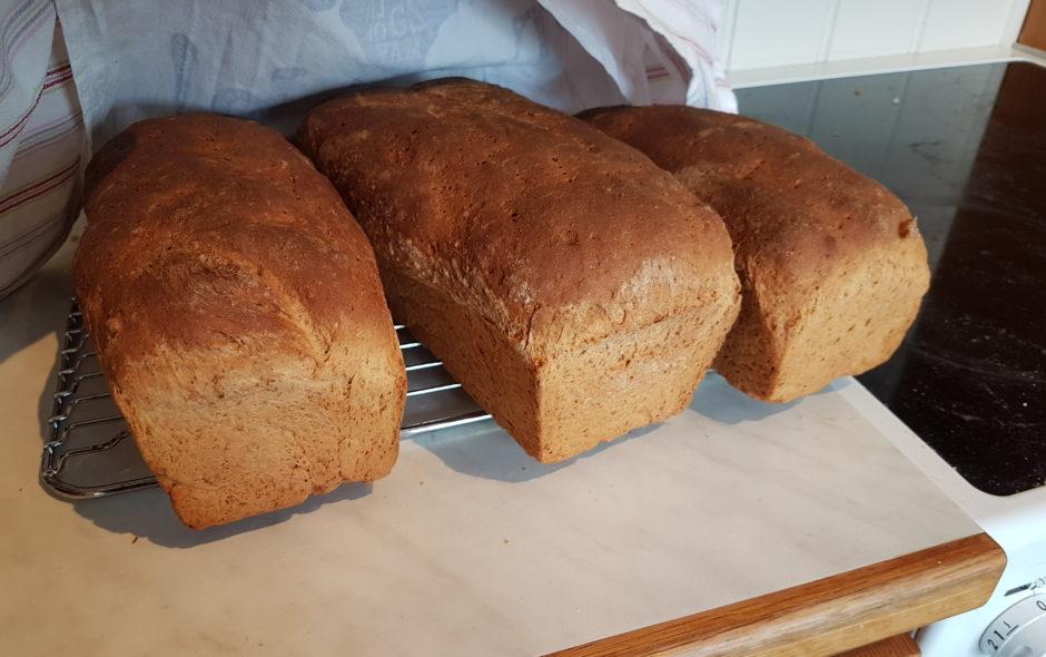 Hvordan bake brød
